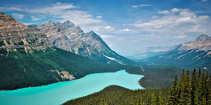 Peyto Lake, Canadian Rockies.
